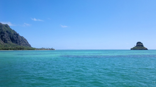 If that's the sea of confusion, I'll be floating in it for a while. (Wikipedia - Mokoli'i)
